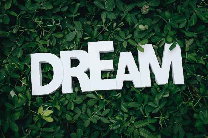 dream text on green leaves